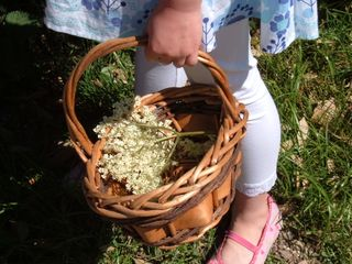 Macy elderflower basket