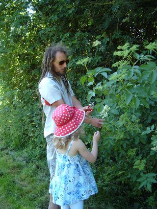 Macy & dad elderflower cutting