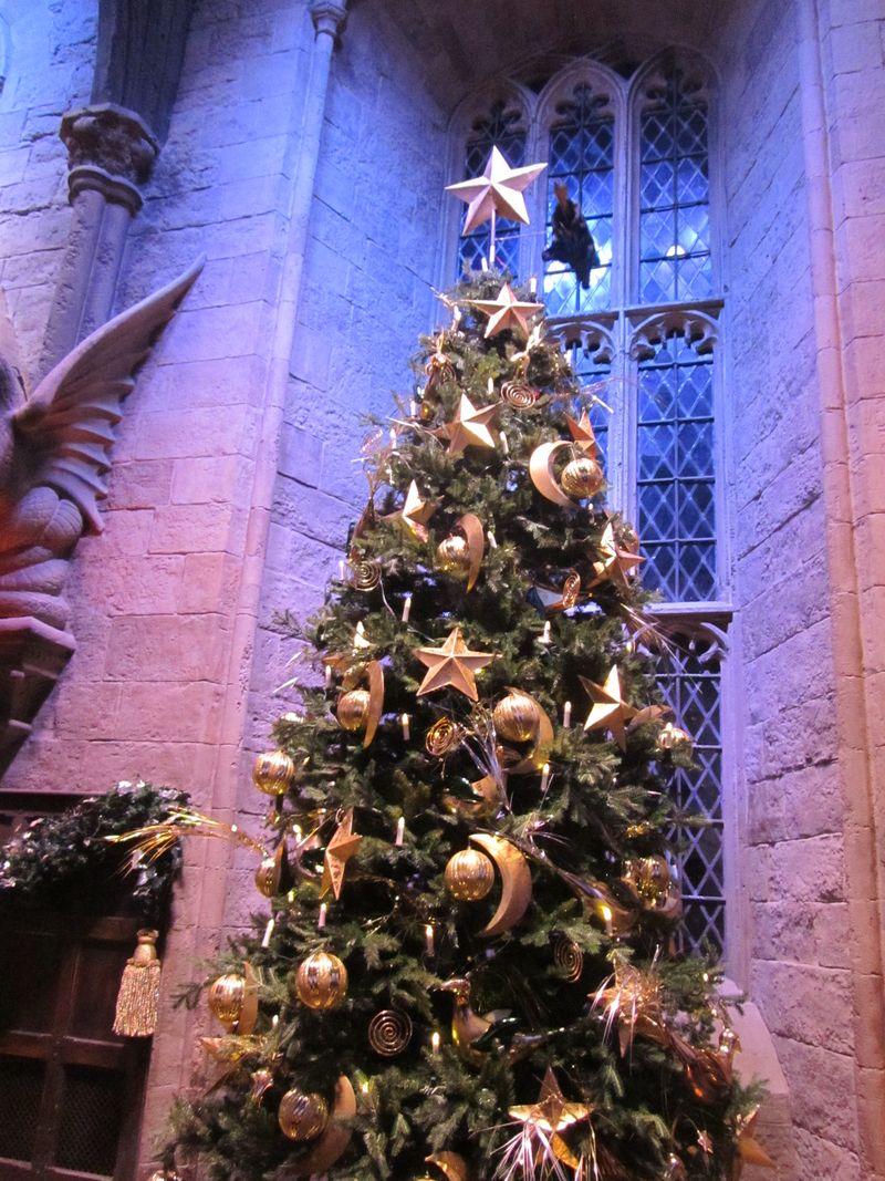 Harry Potter 024