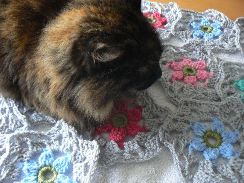 Hexagon flower shawl jan 2015 017