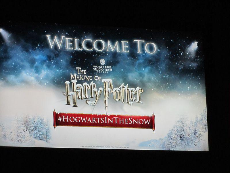 Harry Potter 019