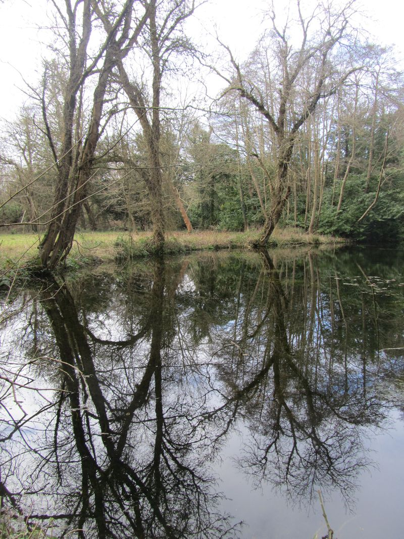 Jan blog 2015 country walk 109